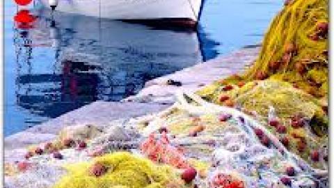 την αλιεία ναύλωσης κολεγιακό σταθμό