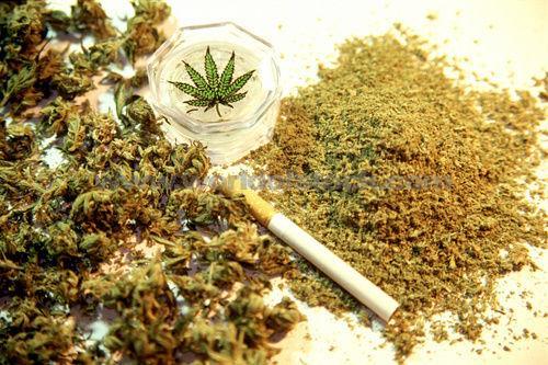 Αποτέλεσμα εικόνας για Ναρκωτικά